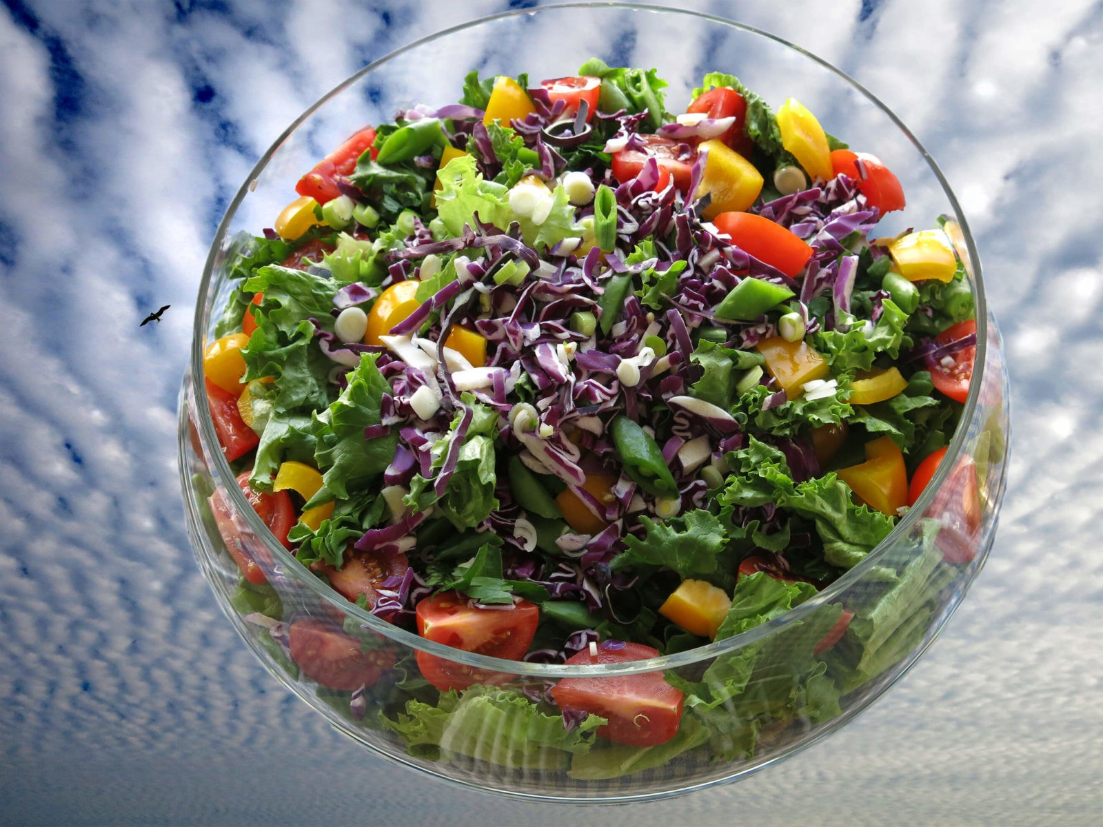 Robin Botie of Ithaca, New York, photoshops a salad that sings in the sky.
