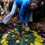 Robin Botie of ithaca, New York, Photoshops a friend making a mandala for healing and peace after the election.