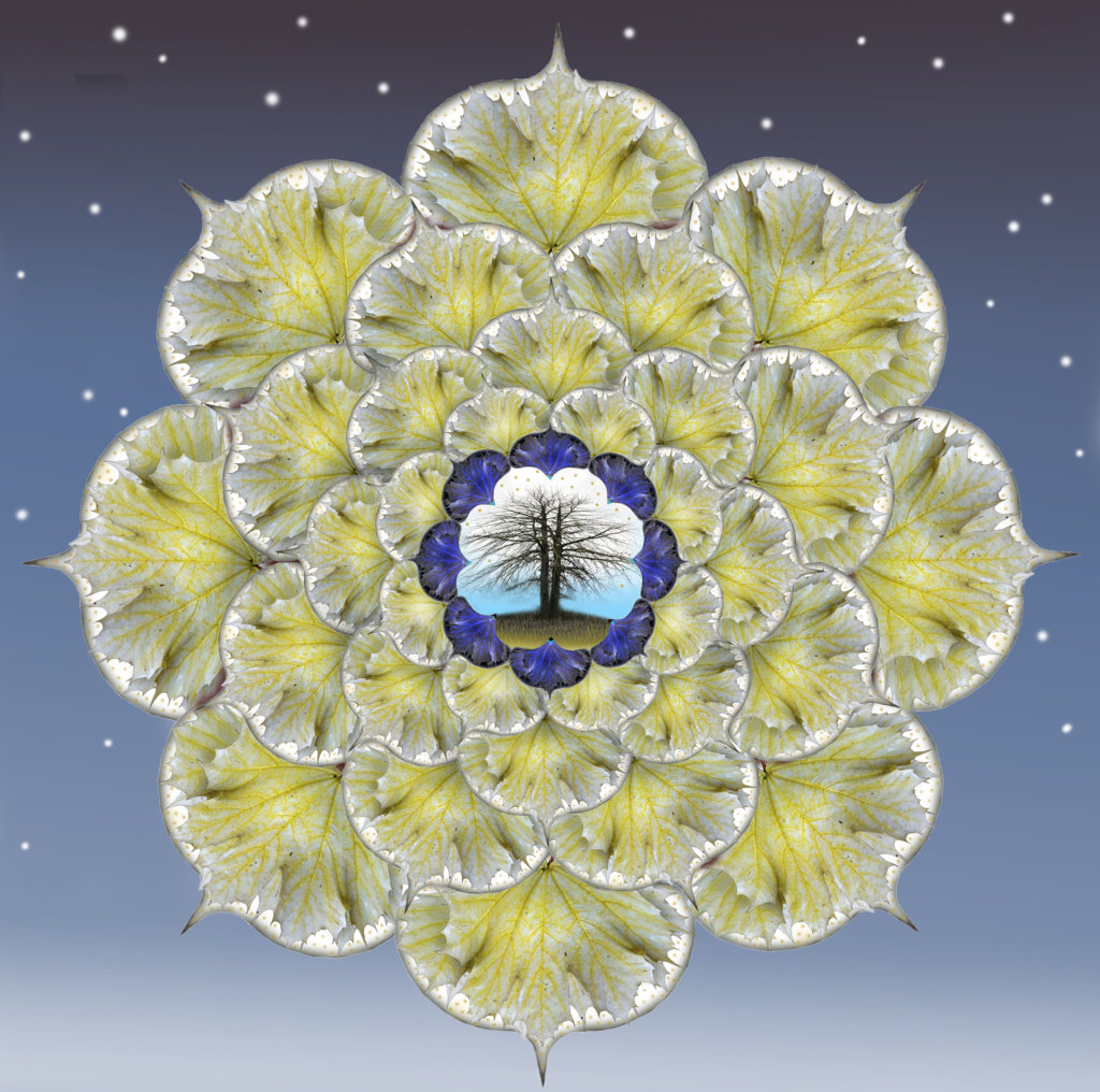 Robin Botie of Ithaca, New York, photoshops a healing mandala.