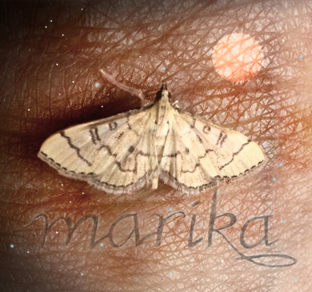 Robin Botie of Ithaca, New York, photoshops a picture of a small gold moth, perhaps a sign sent to her from her daughter who died, from the other side.