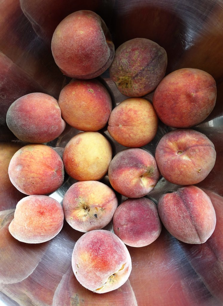 Robin Botie of ithaca, New York, photographs peaches before going to various friends to help make a peach pie in a celebration of life.