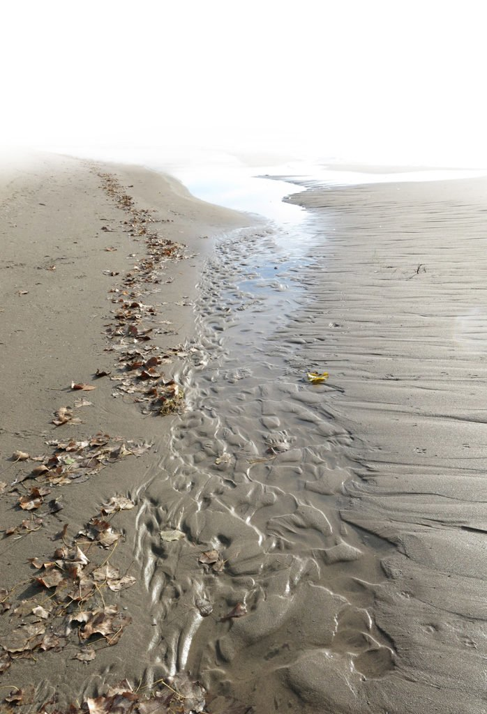 Robin Botie of Ithaca, New York, photoshops a beach to illustrate the life and death cycle.